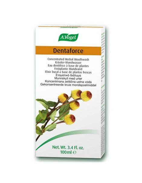 Elixir Dentaforce Echinacea A.Vogel - 100 ml.