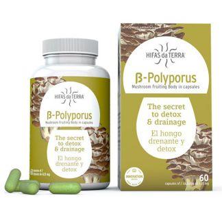 B-Polyporus Hifas da Terra - 60 cápsulas