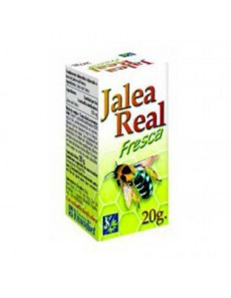 Jalea Real Fresca Ynsadiet - 20 gramos