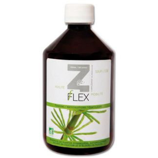 Z-Flex Mint-e Health Laboratories - 500 ml.