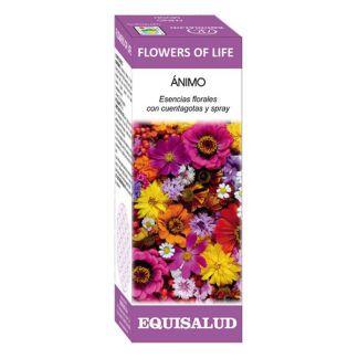 Flowers of Life Ánimo Equisalud - 50 ml.