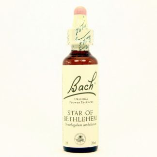 Star of Bethlehem/Leche de Gallina Flores Dr. Bach - frasco de 20 ml.