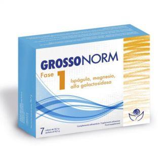 Grosonorm Fase 1 Bioserum - 7 sobres