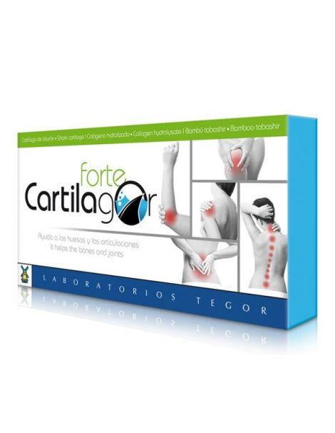 Cartilagor Forte Tegor - 40 cápsulas