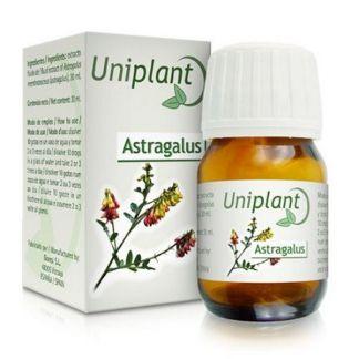 Uniplant Astragalus Tegor - 30 ml.