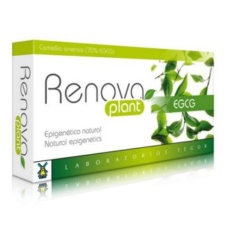 Renovaplant EGCG Tegor - 40 cápsulas