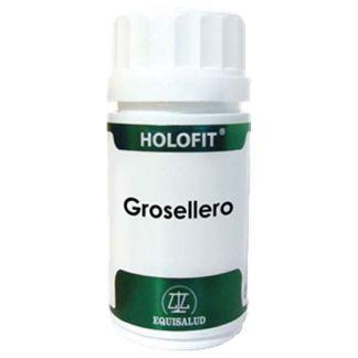 Holofit Grosellero Equisalud - 60 cápsulas
