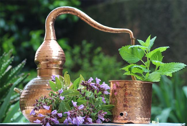 alambique destilando aceites esenciales