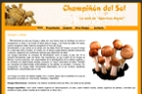 www.champiñondelsol.com